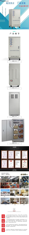 30高精度全自动交流稳压器6