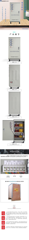 40高精度全自动交流稳压器9